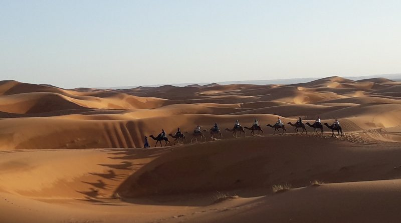 Real Sahara desert (Erg Chebbi near Merzouga) : Camel Ride & overnight in desert tent