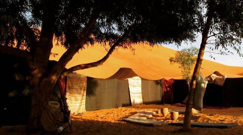 Sahara desert Camping camps in the desert economy budget range