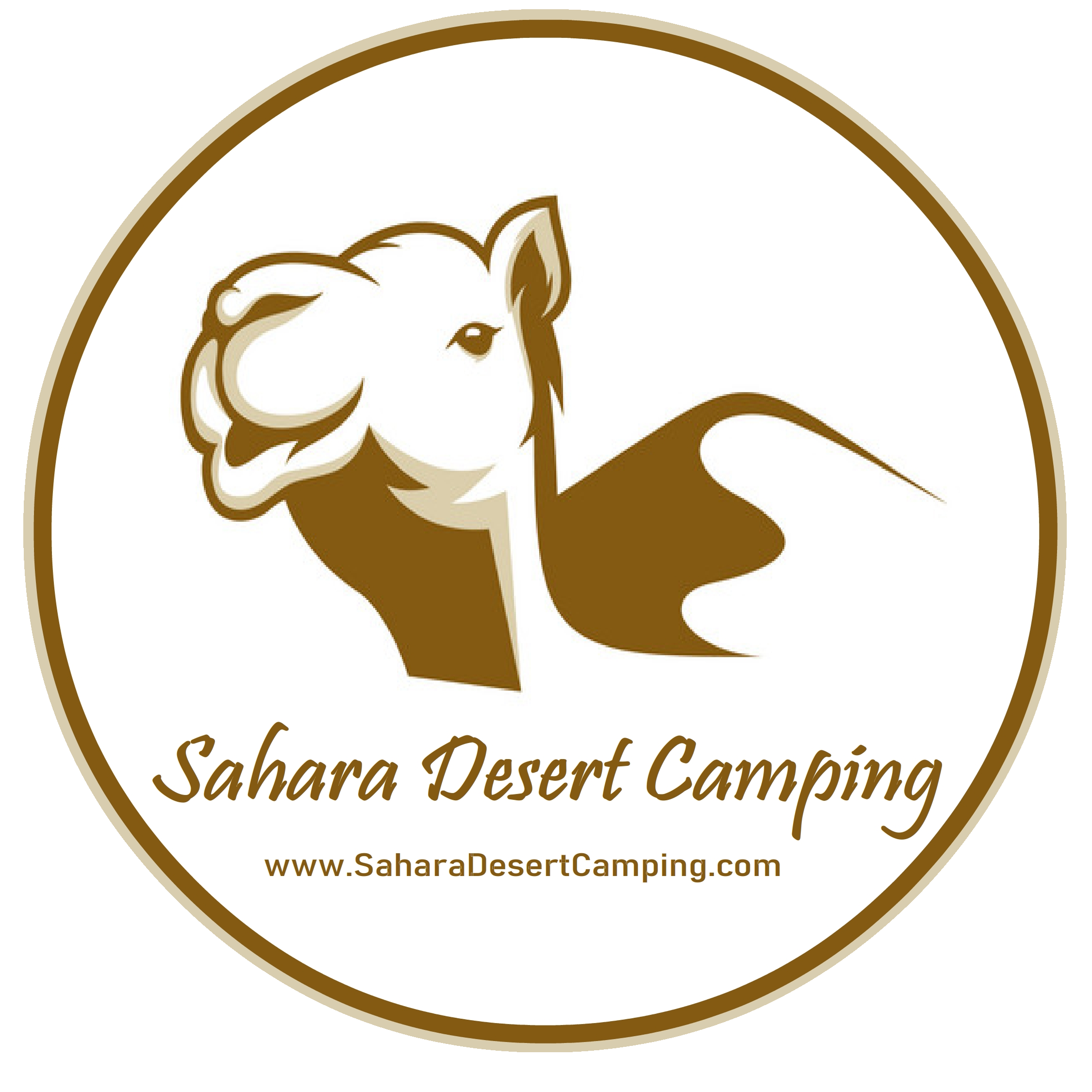SAHARA DESERT CAMPING The Best Luxury & Standard Camps Where To Stay In Morocco