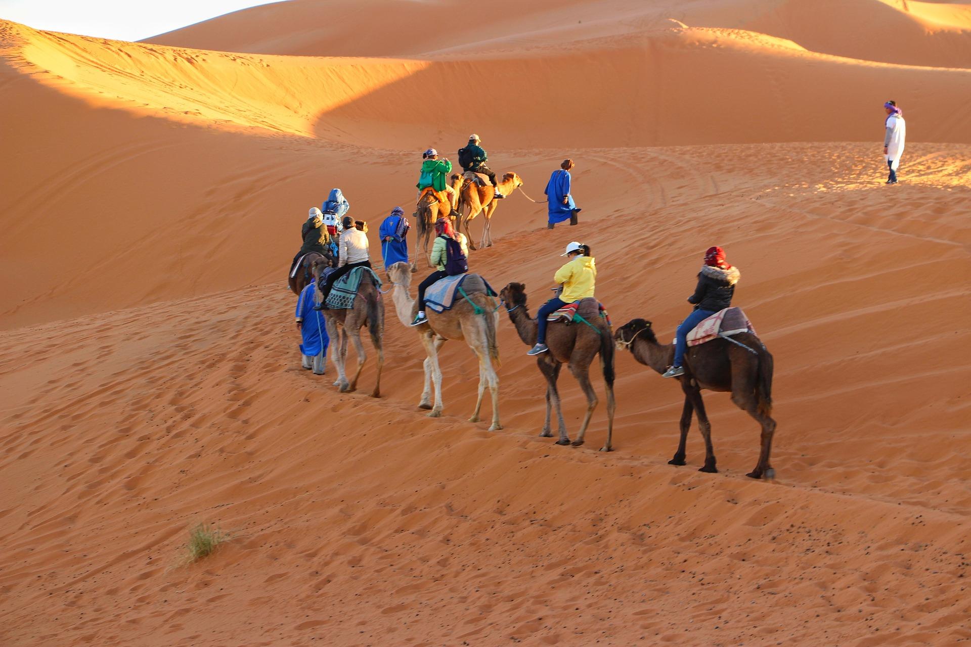 Sahara-Desert-Camping-Luxury-Desert-Camp