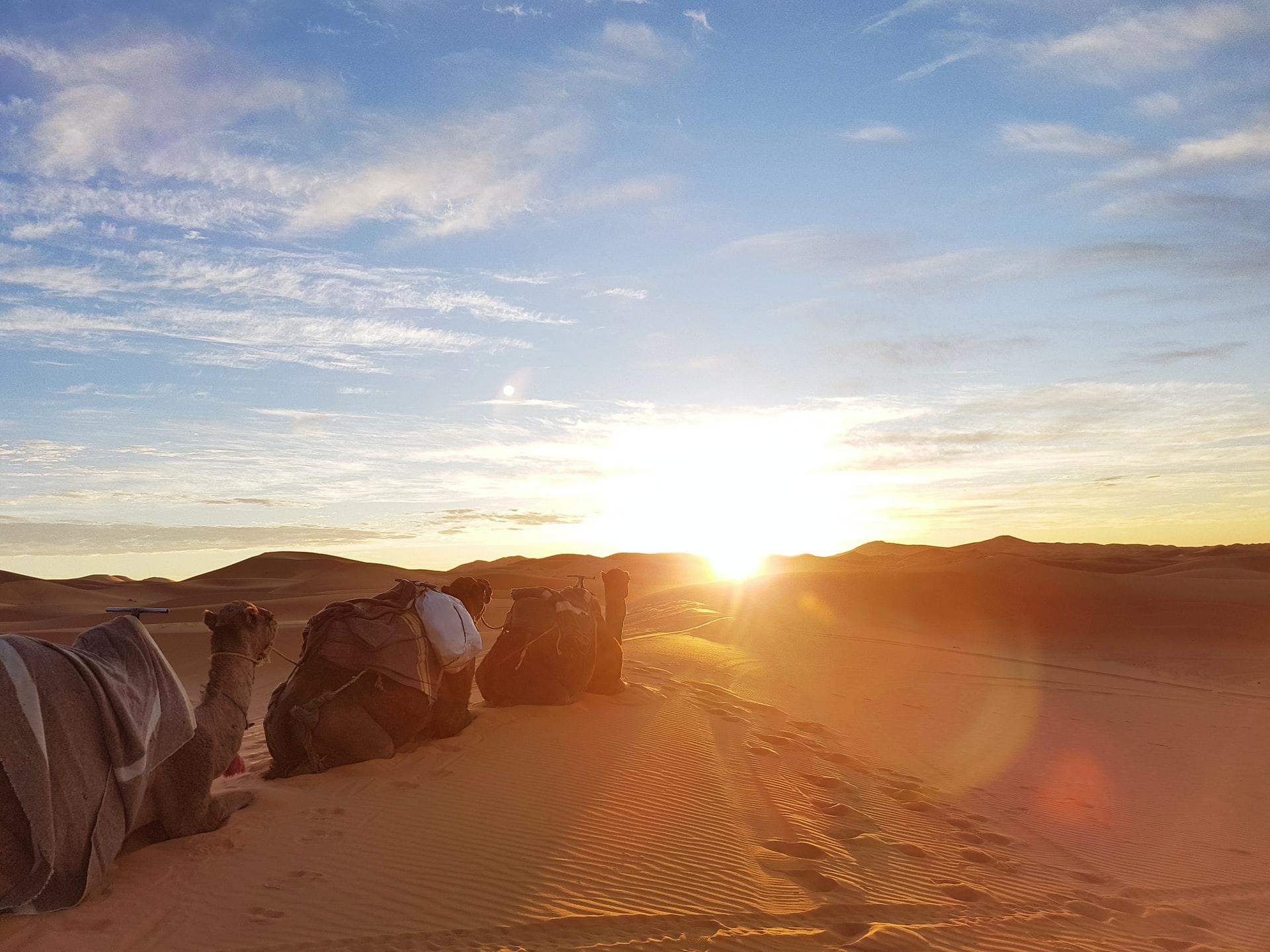 sunrise time from the dunes of erg chebbi at merzouga - sahara desert camping - sahara desert activities